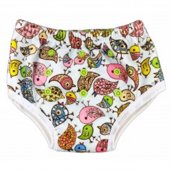 Potty Training Pants (Minky) Birds