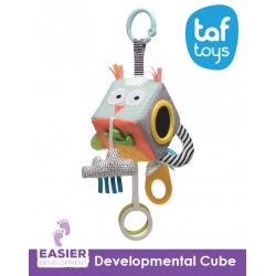 Taf Toys Developmental Cube