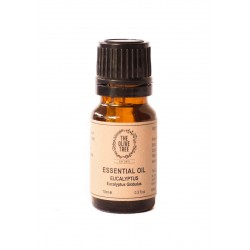 The Olive Tree Eucalyptus Essential Oil