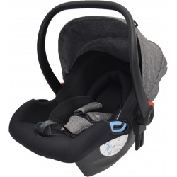 Evenflo GEO Infant Carrier Car Seat (EV 28-B7WB)